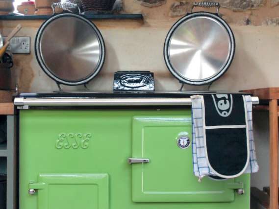 Fern Green CAT Gas in kitchen