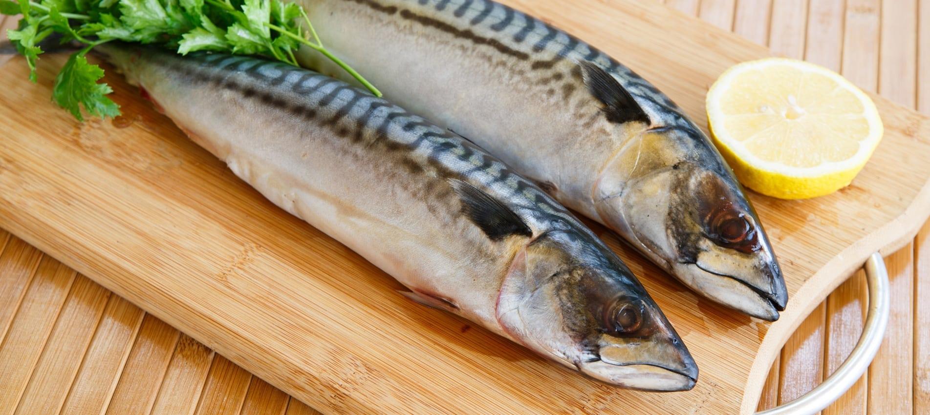 Cooking mackerel stuffed with salsa verde - ESSE
